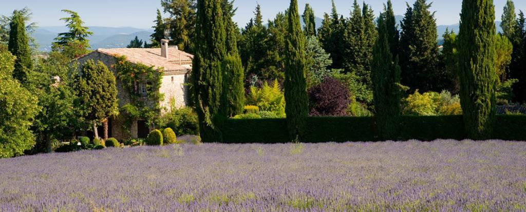 Provençalpes