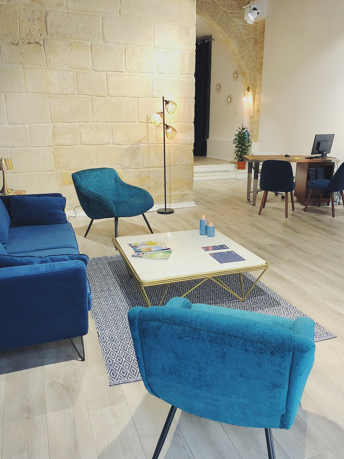 Leonis Immobilier Pays d'Arles