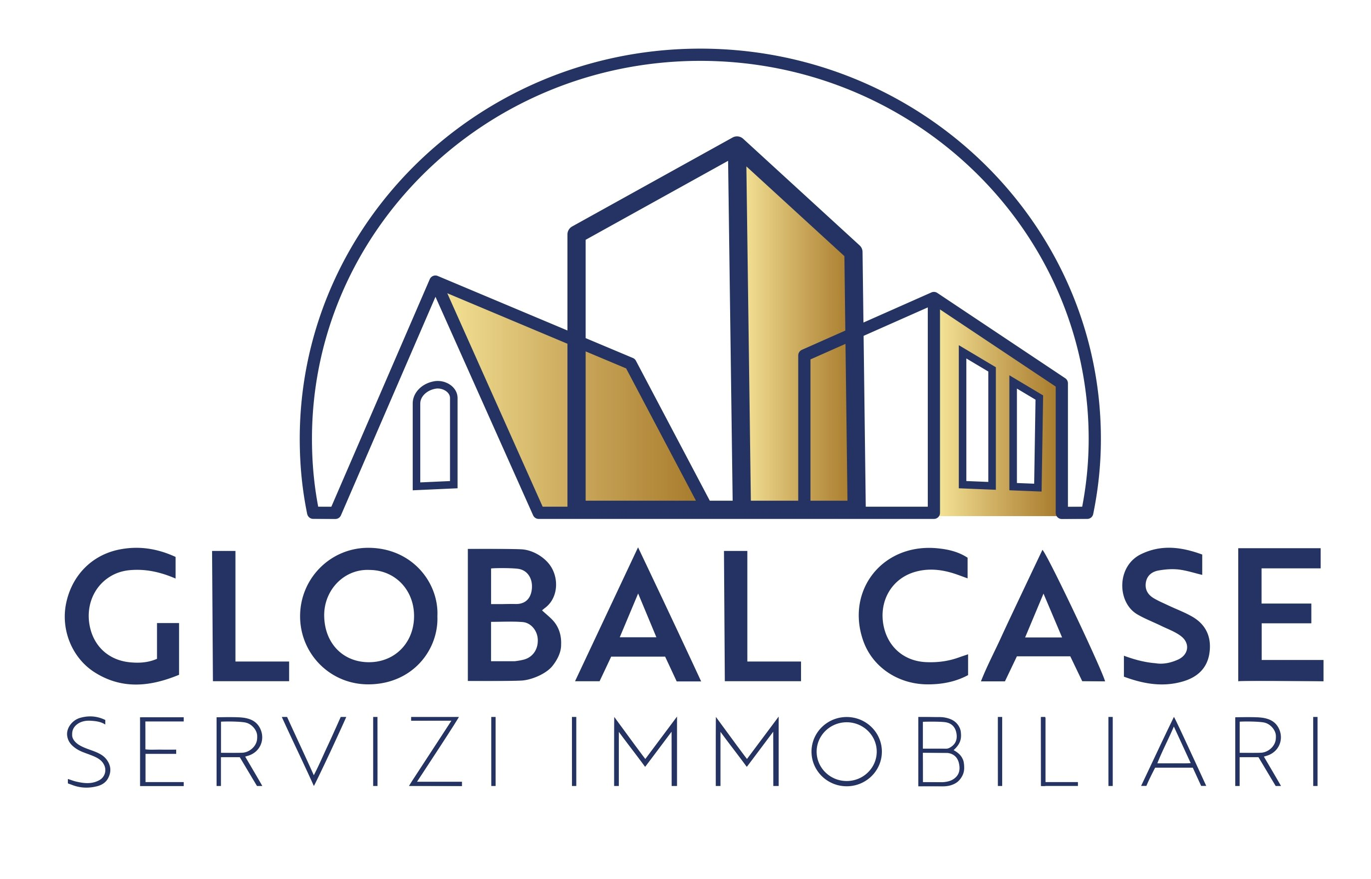 Global Case