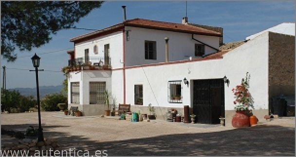 Sale Business - Pinoso - Spain