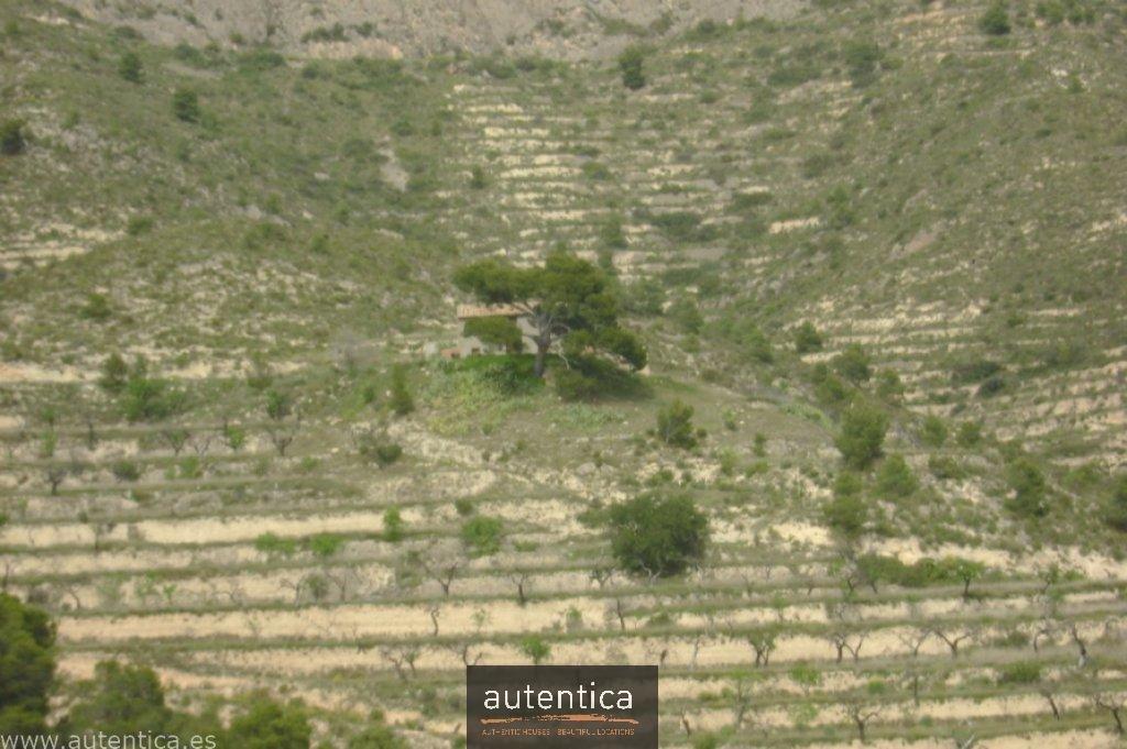 Venta Finca - Relleu - España