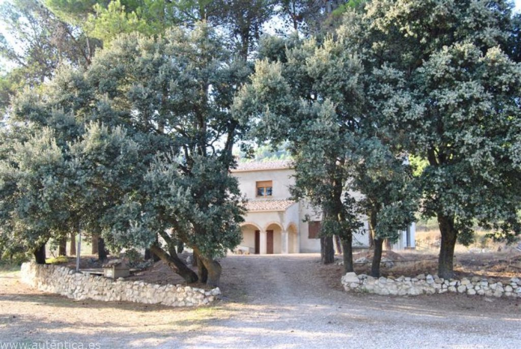 Wonderful Masia with horse facility surrounded by protected nature