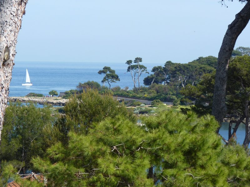 Cap d'Antibes - Superb villa with panoramique sea view
