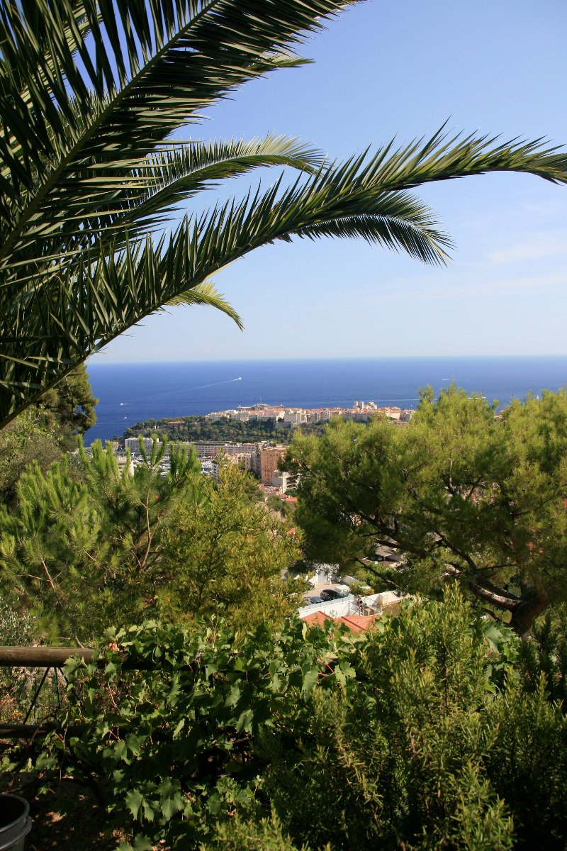 Villa 4 Rooms - Beausoleil - € 955,000