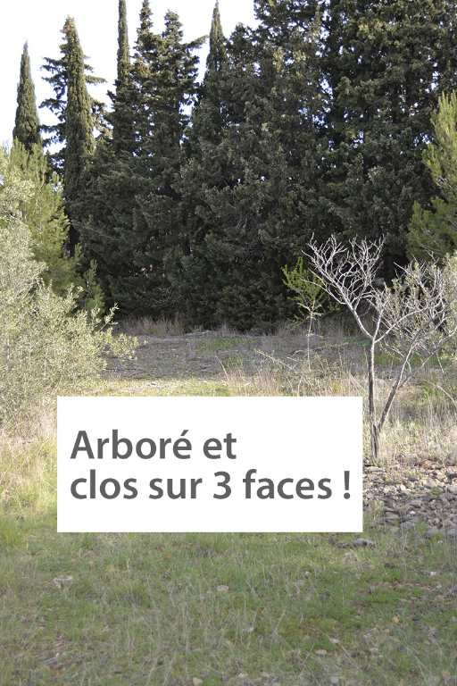 Sale Building land - Bize-Minervois