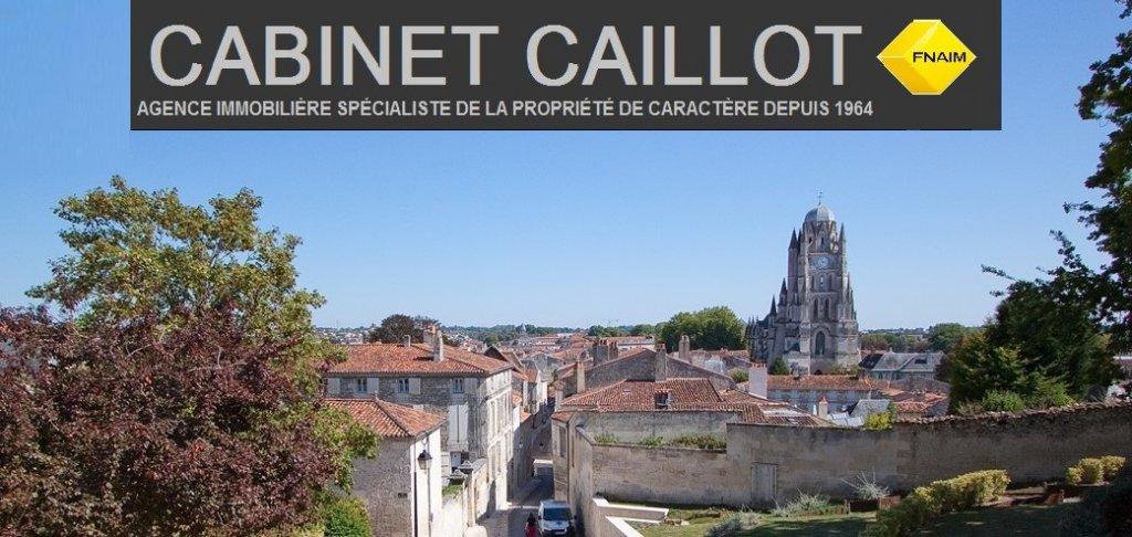 SAINTES Hyper Centre Rive Gauche
