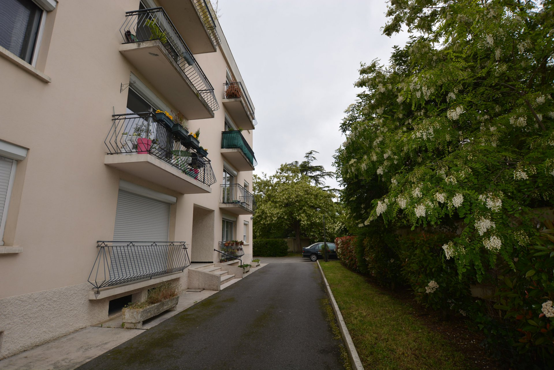 Rental Apartment - Tournefeuille