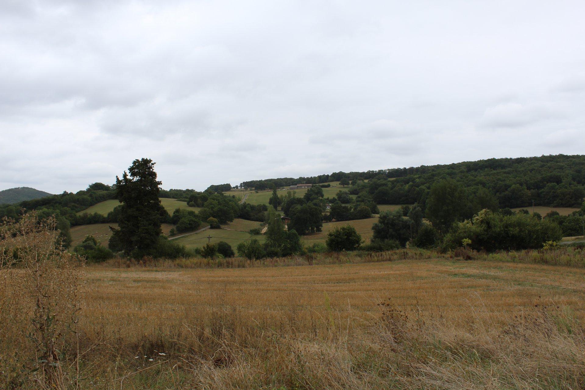 Very nice serviced land,low price!!!