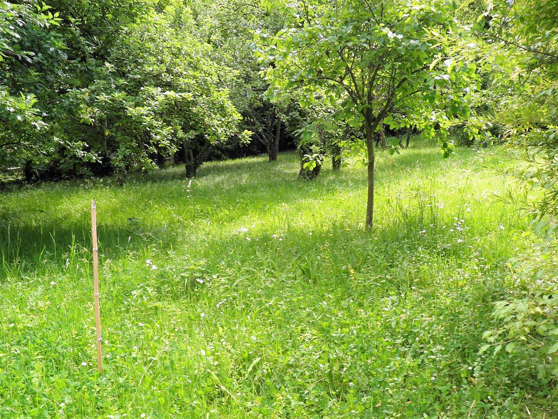 Vente terrain breuillet 120 000 for Financement pour terrain