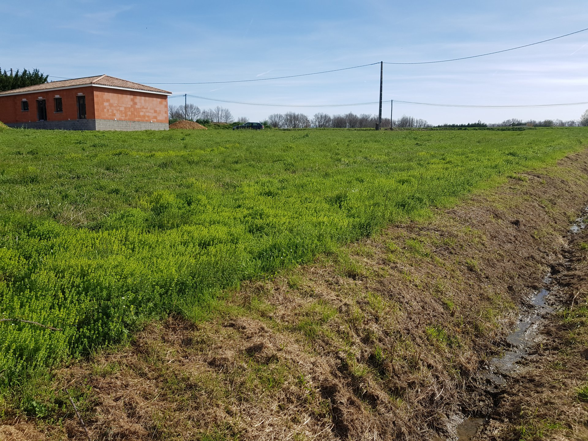In Mondavezan, building plot of 2002 m² with planning permission