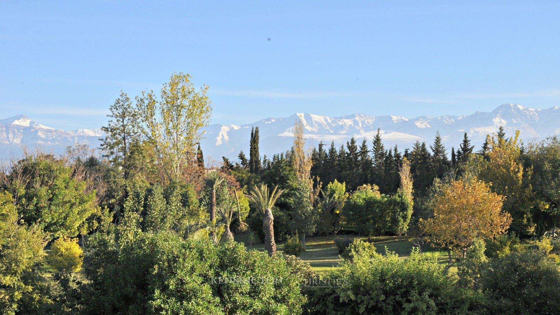 KPPM00719: Outstanding villa off the road to Ourika Luxury Villa Marrakech Morocco