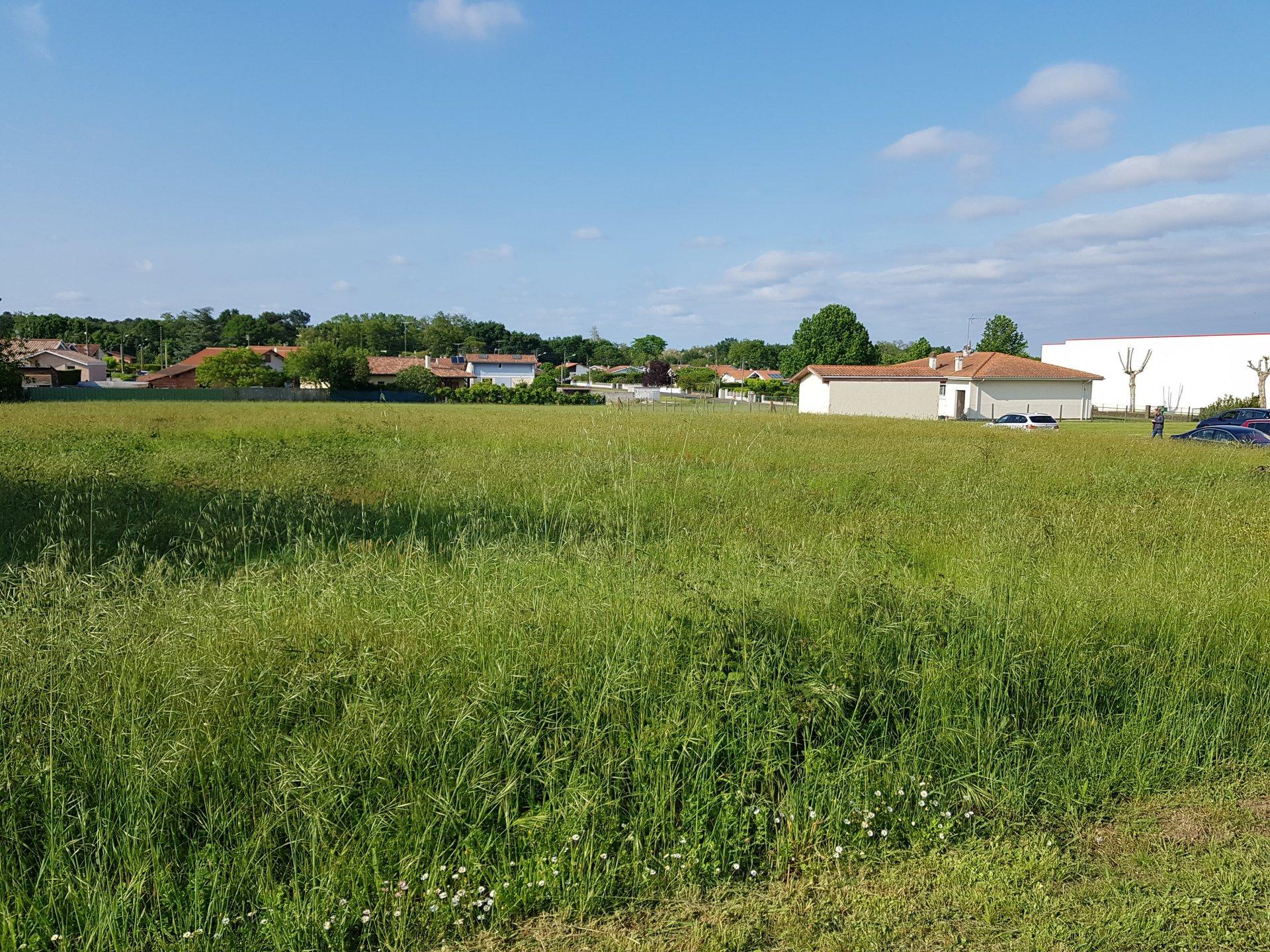 Terrain zone artisanale Saint Paul Les Dax