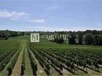 23 公顷漂亮的葡萄园庄园