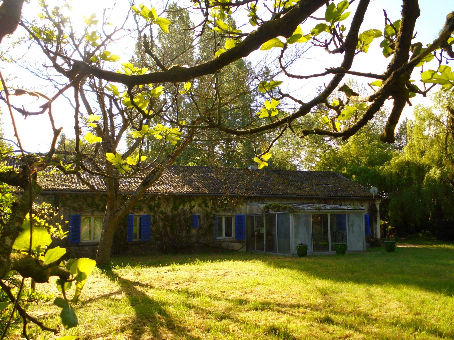 Chouzé sur Loire