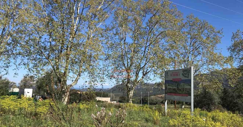 Vendita Villa - Calenzana