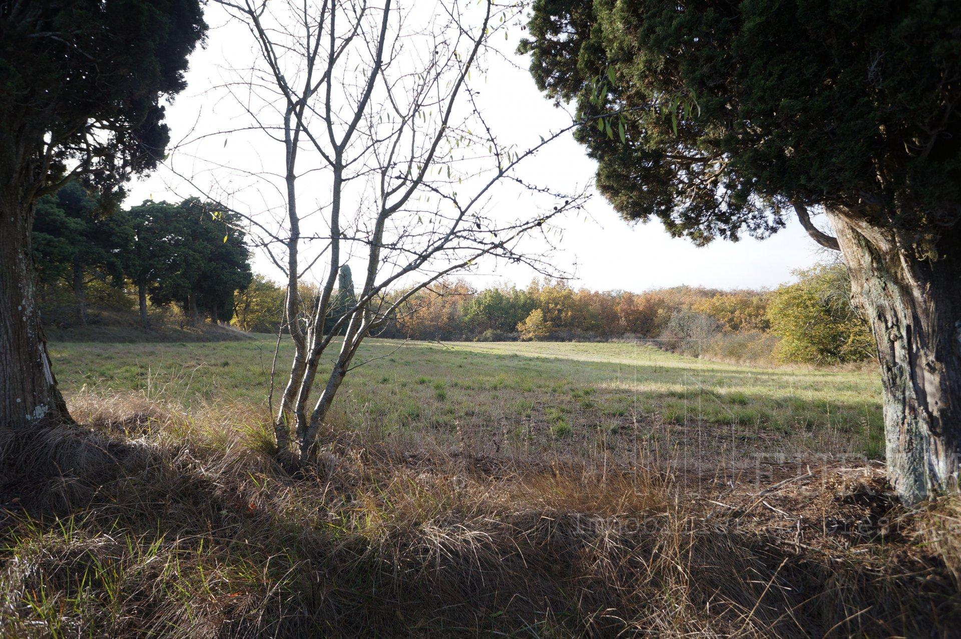 Sale Property - Castelnaudary