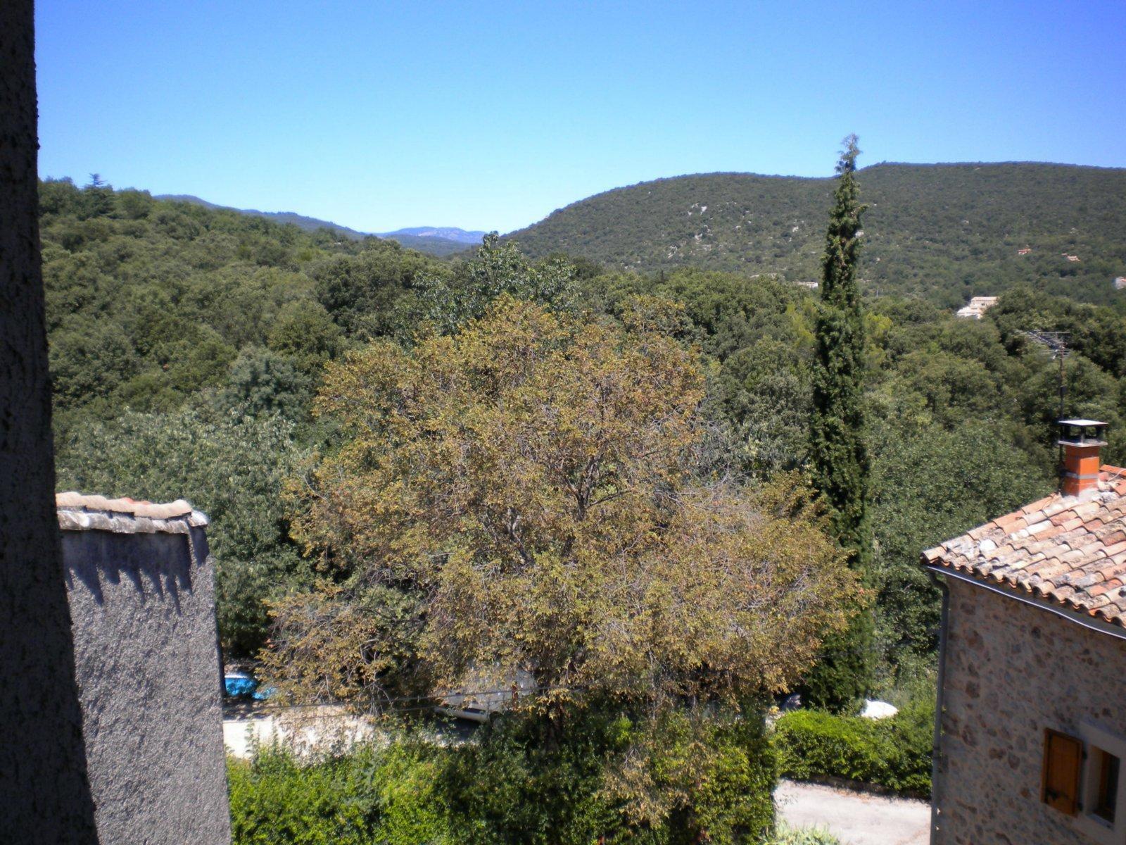 GRANDE MAISON DE VILLAGE avec jardinet