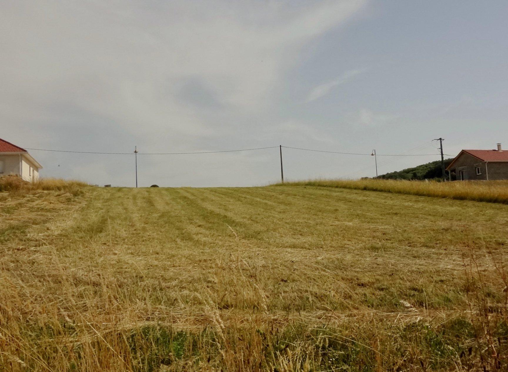 Vente Terrain - Bizonnes