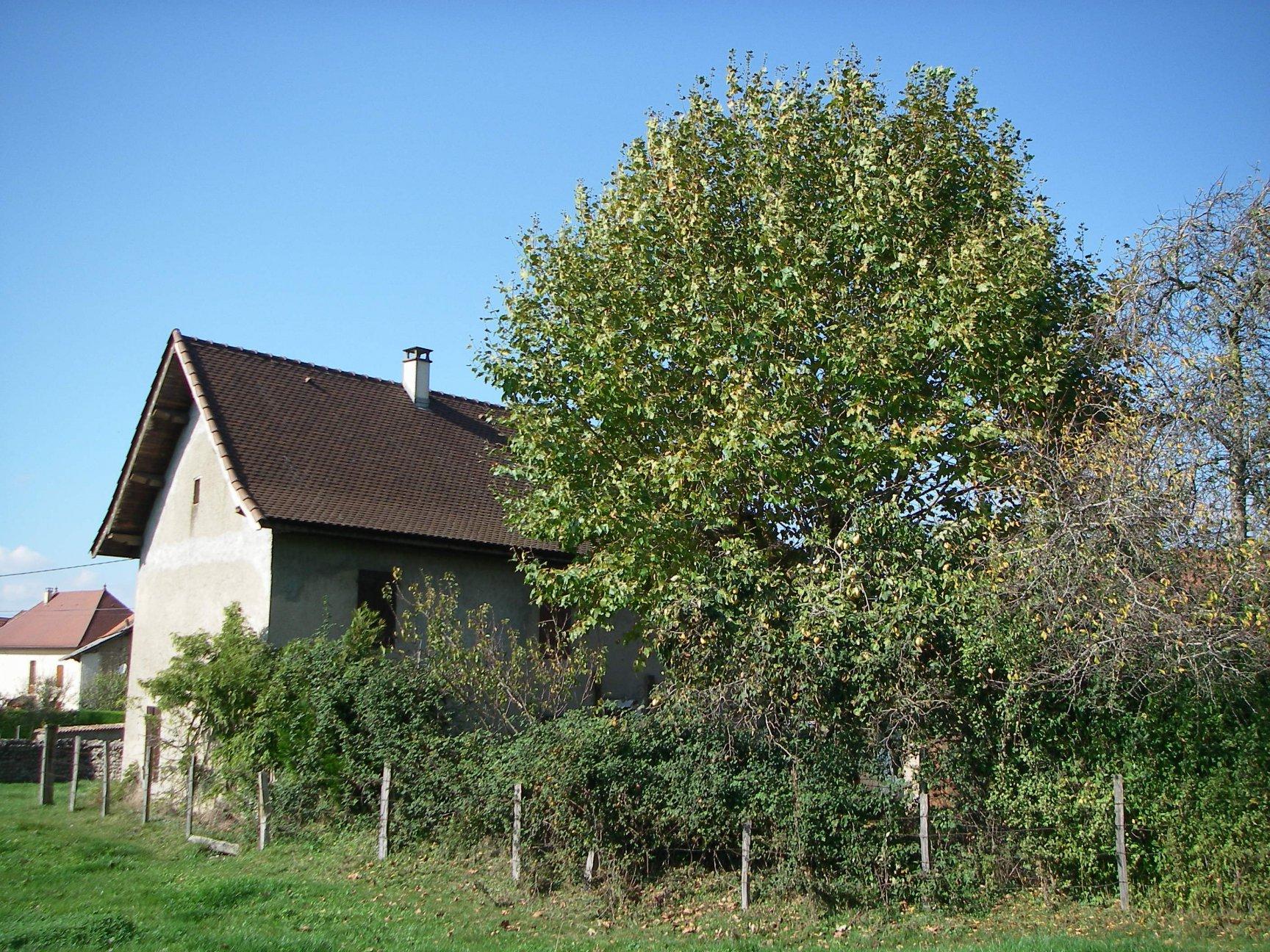 Vente Maison - Chélieu
