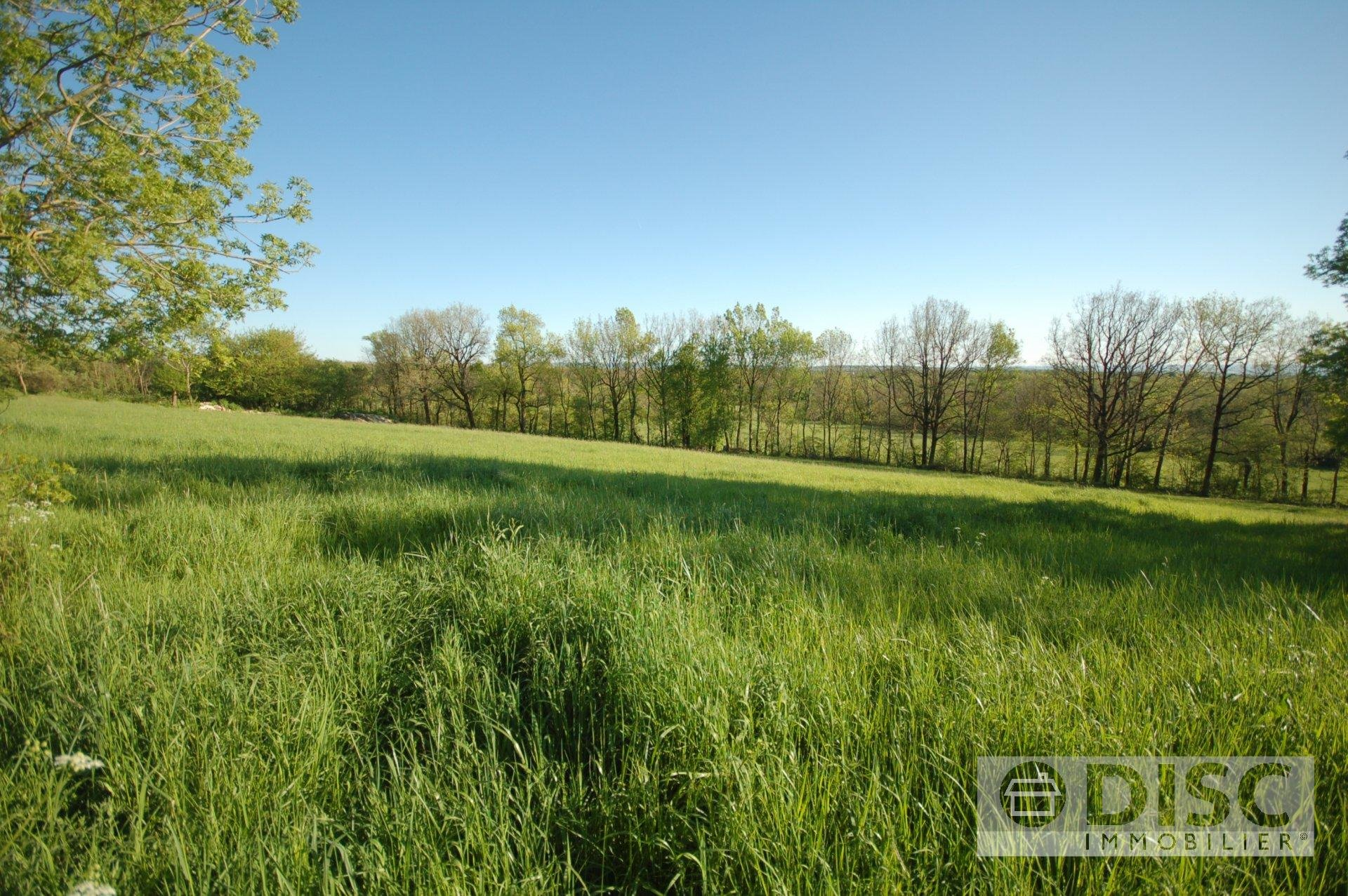 Beautiful building plot (3501m²) with building permission.