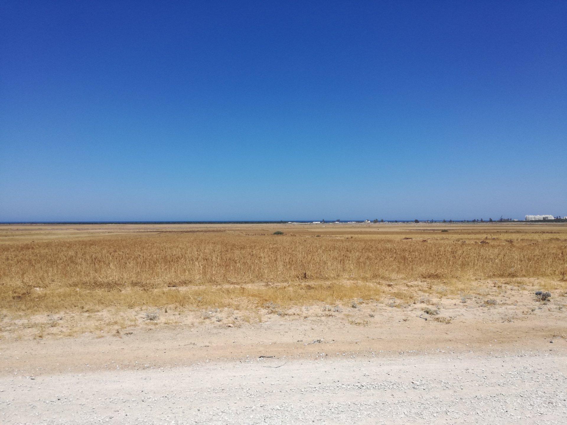 Terrain loti à Hergla