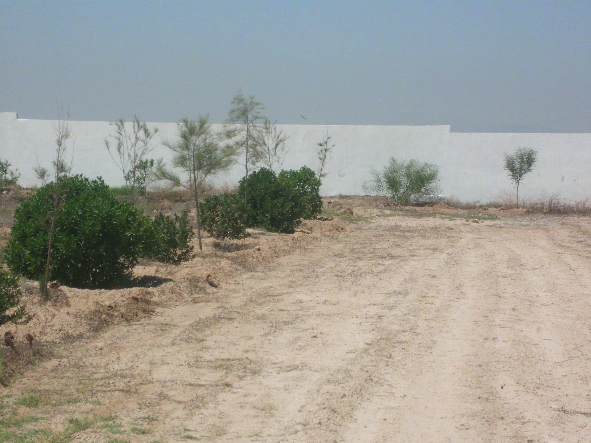 terrain loti à vendre à Hergla