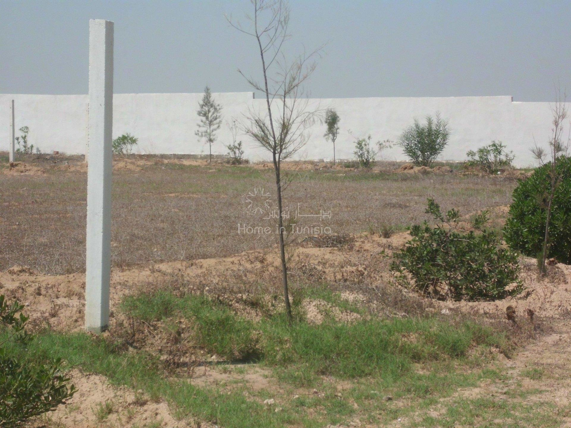 terrain  loti de 715 m²
