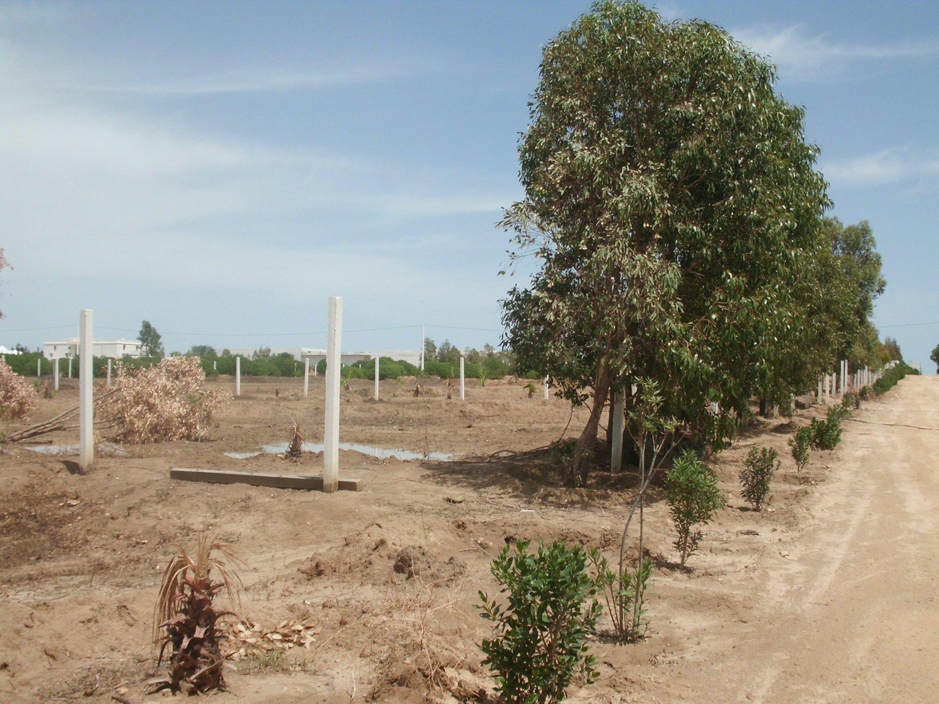 terrain loti de 633 m²