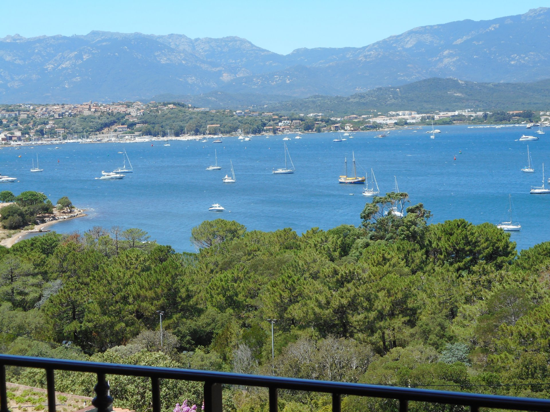 Sale of 2200m2 of land in Porto Vecchio