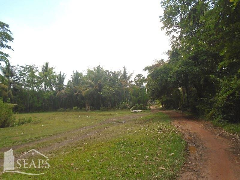 出售  Kampot