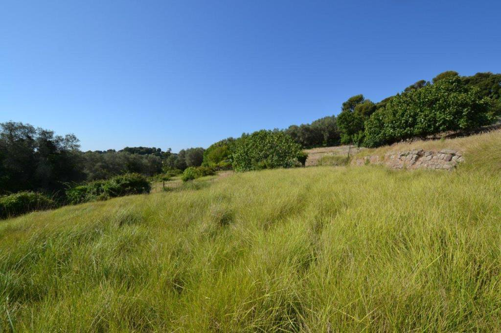 Sale Plot of land - Biot Saint Julien