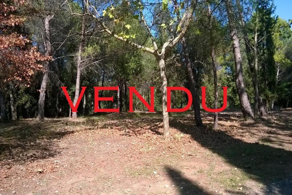 Sale Not constructible land - Biot Bois Fleuri