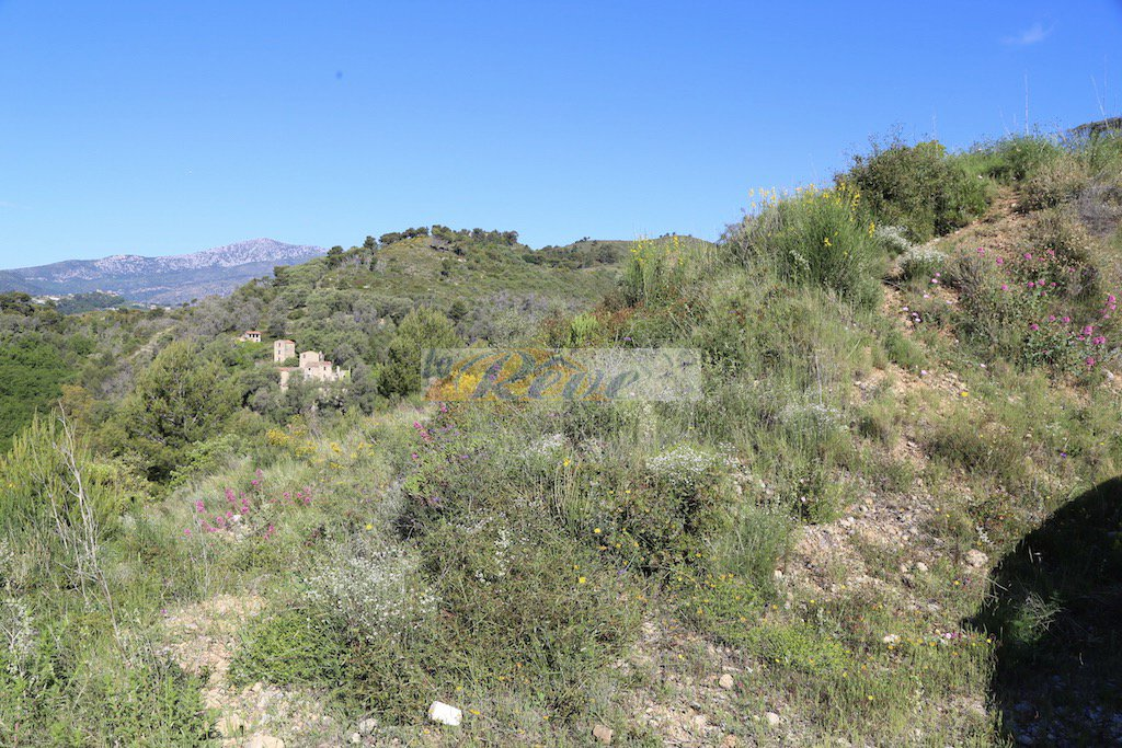 REF IV964 Land with approved  permission to build and sea view for sale in Camporosso San Giacomo.