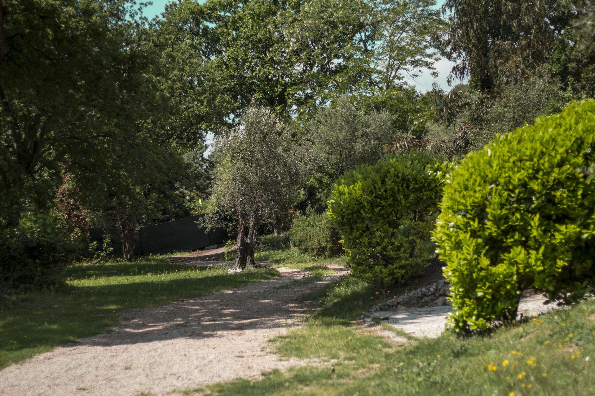 Magnifique propriété: 1,5 ha / vue mer sur Tourrettes sur Loup