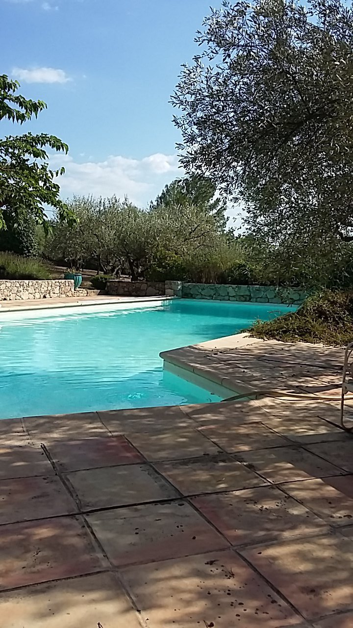 Nice villa with pool and olive trees