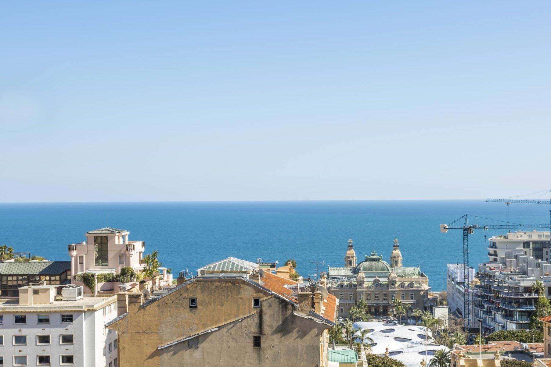 Limite de Monaco 3 pièces vue mer