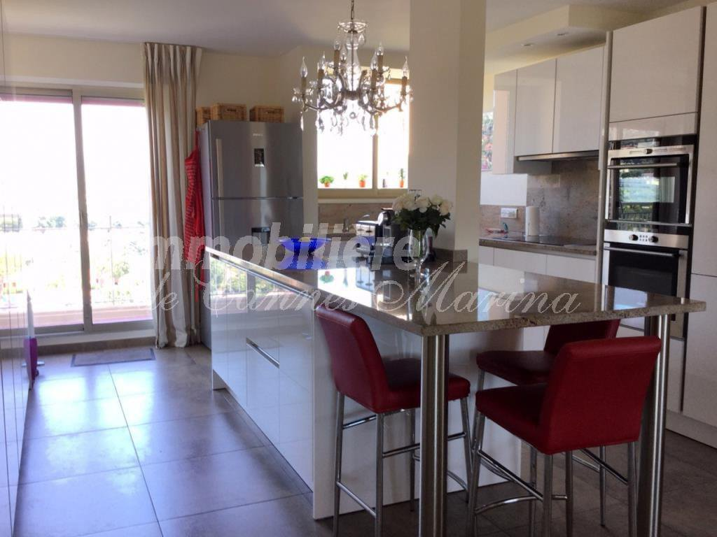 Wondeful, large, impeccable Penthouse Apartment.175 m2 livingspace - 230 m2 terrace.Quality residence ...