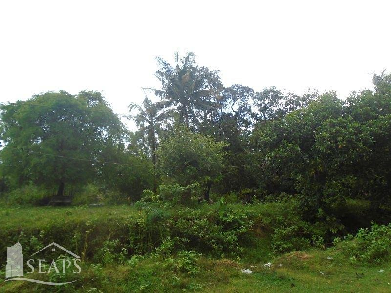 LAND PLOT FOR SALE IN STEUNG HAV TOWN