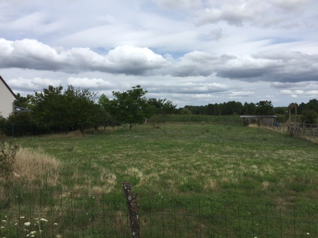 Sale Building land - Channay Sur Lathan