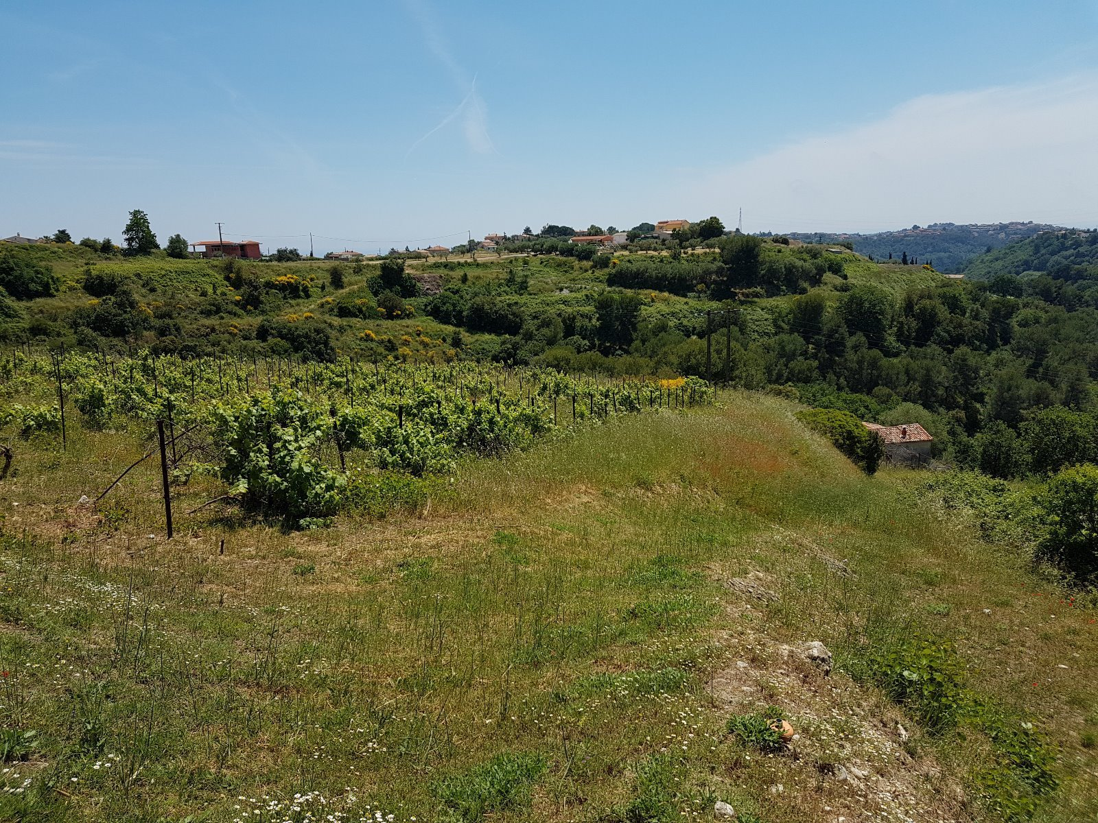 Important property with 6 acres of land and see view