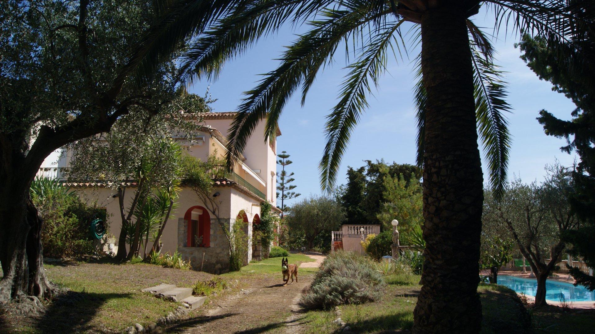 Vendita Proprietà - Nizza (Nice)