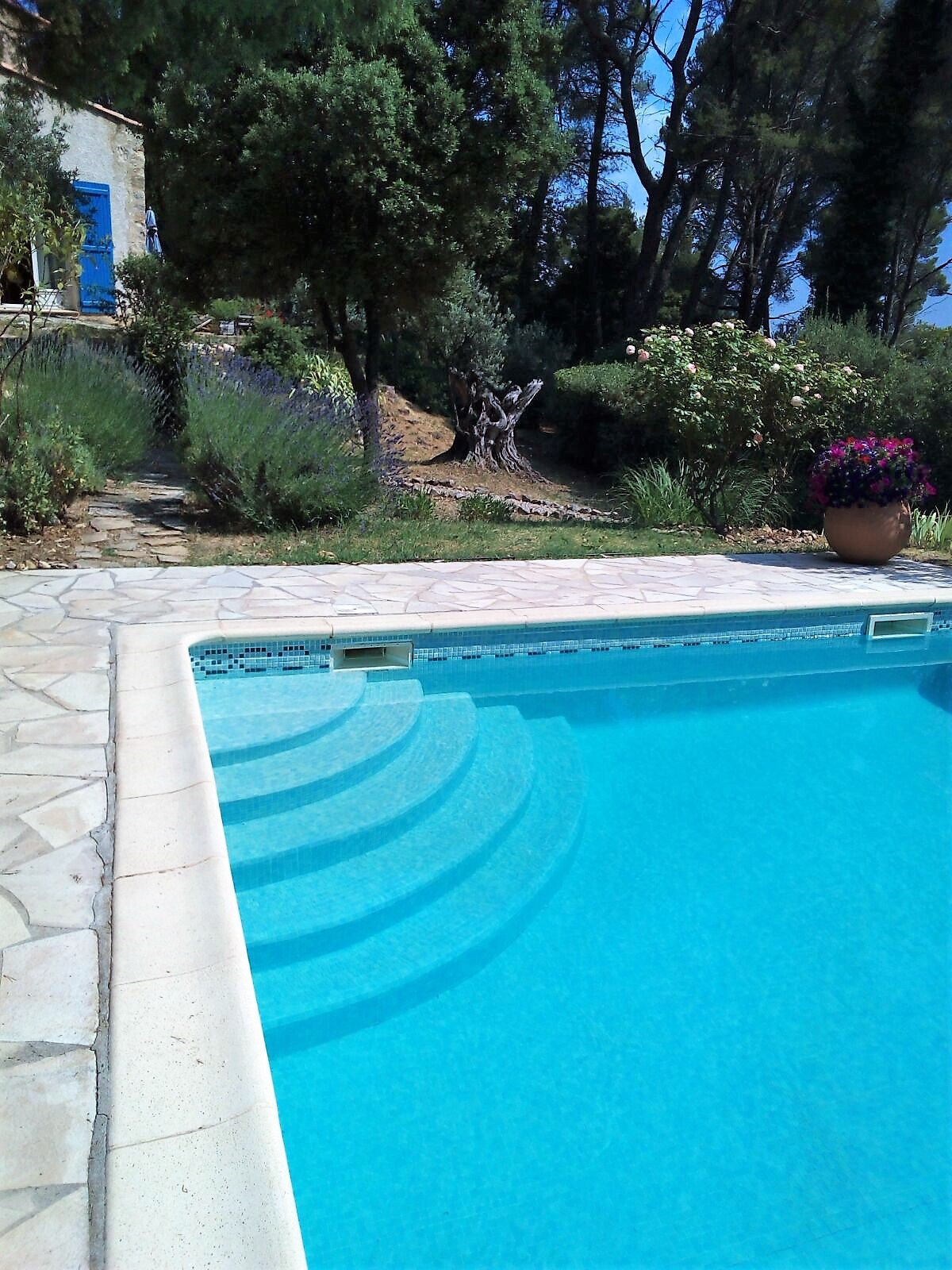 800m from the village Charming House + pool on a land of 8926m²