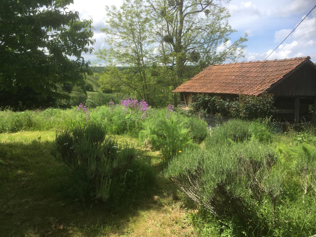 Farmers house on 1,4 ha land in Burgundy
