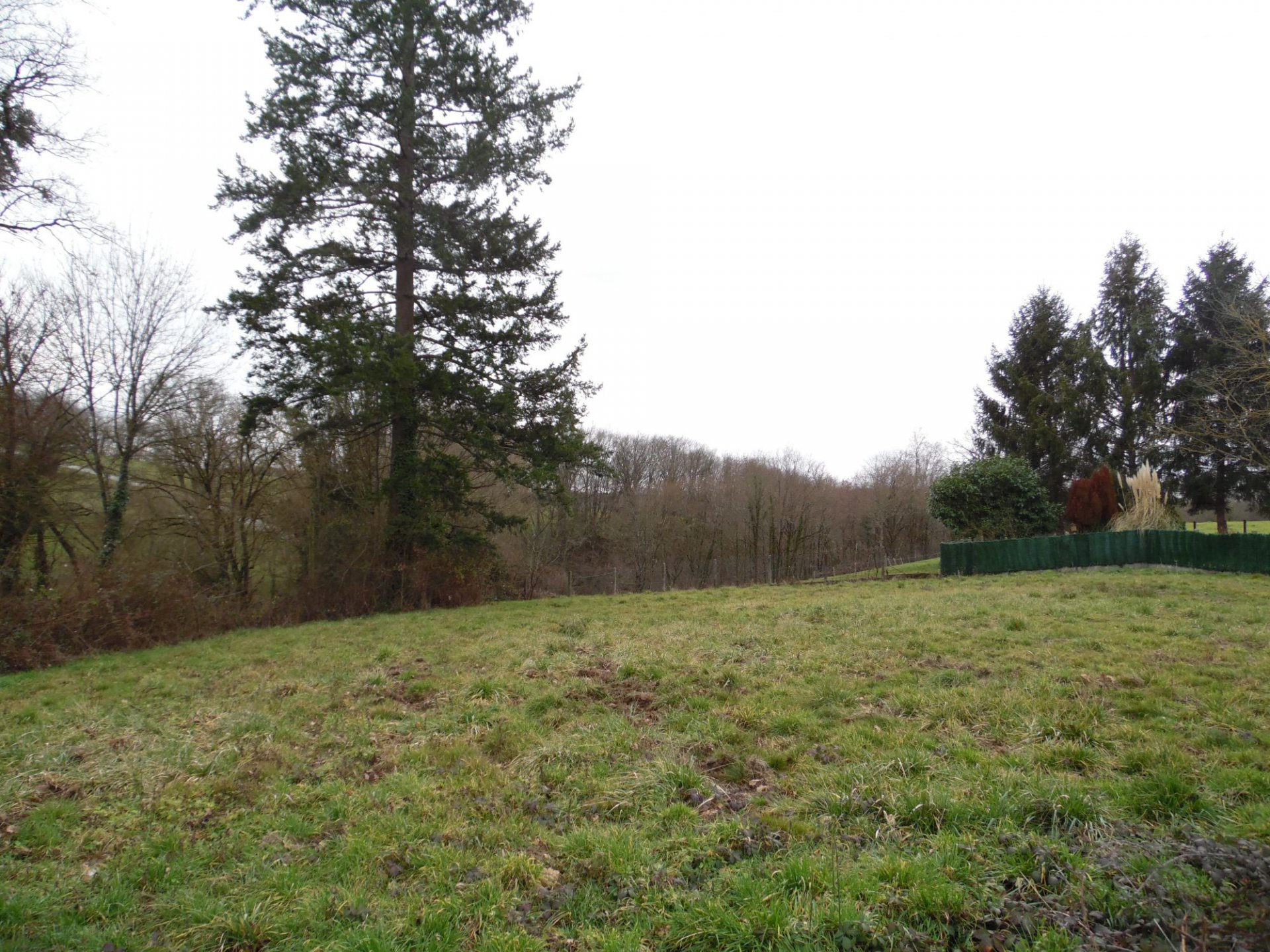 A constructible plot of land in the Limousin.