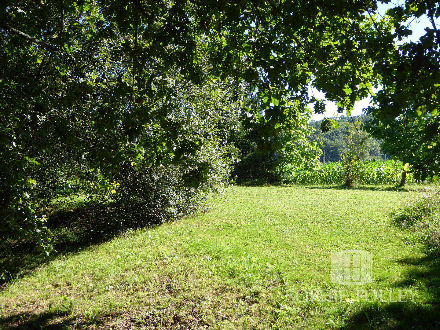 Near SALIES DE BEARN - Classic Béarnaise country cottage with large, semi converted dependency and 4015m² of land.