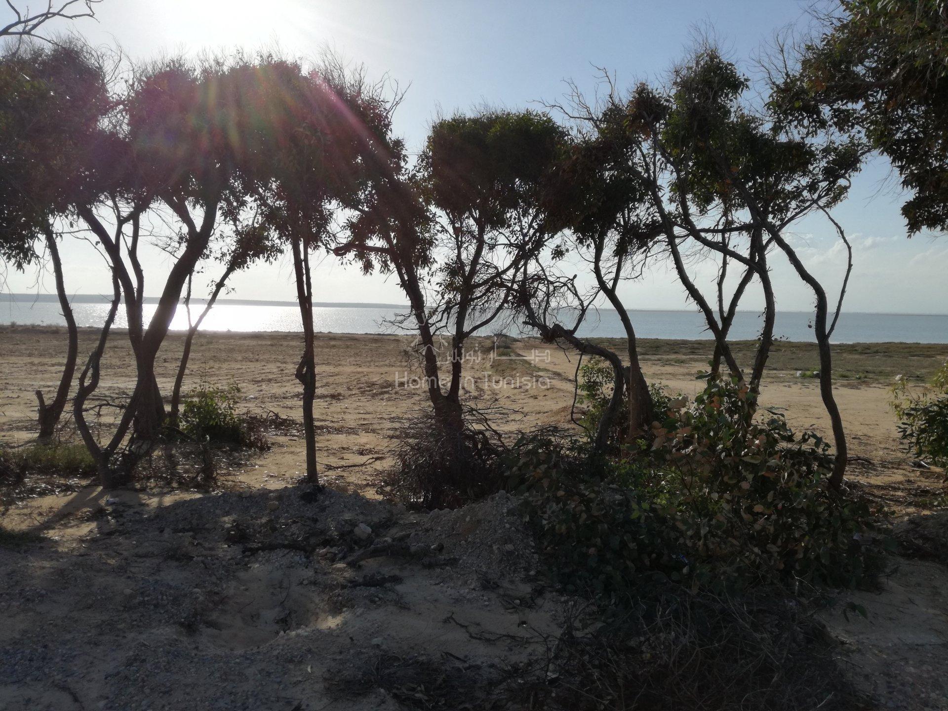 Verkauf Grundstück - Hergla - Tunesien