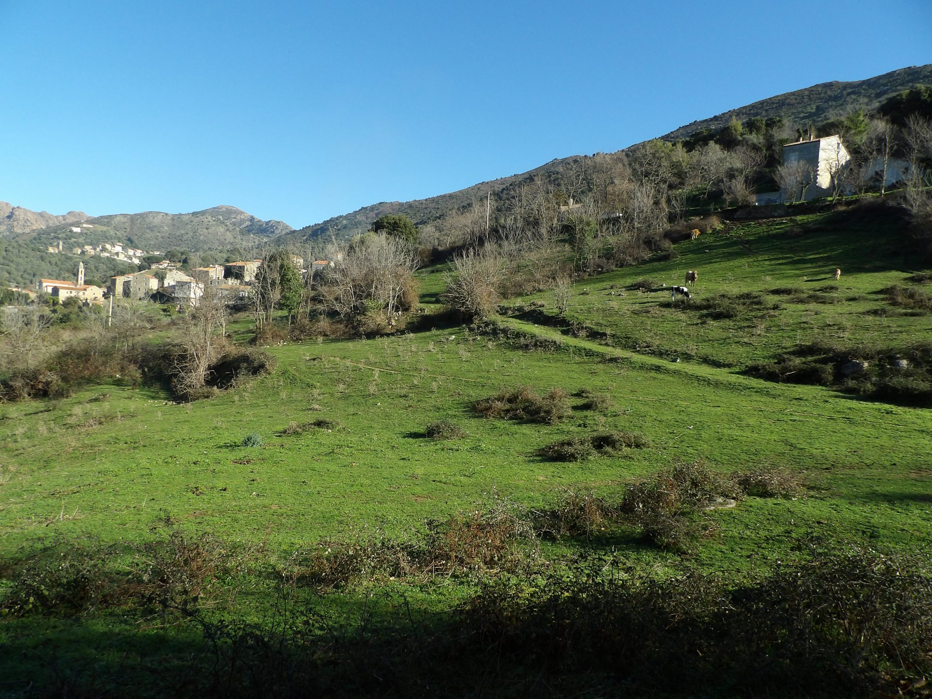Sale Building land - Propriano