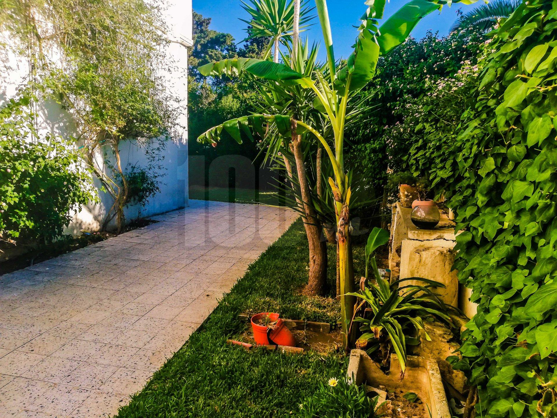 Location appartement S+1 avec jardin à Carthage Amilcar
