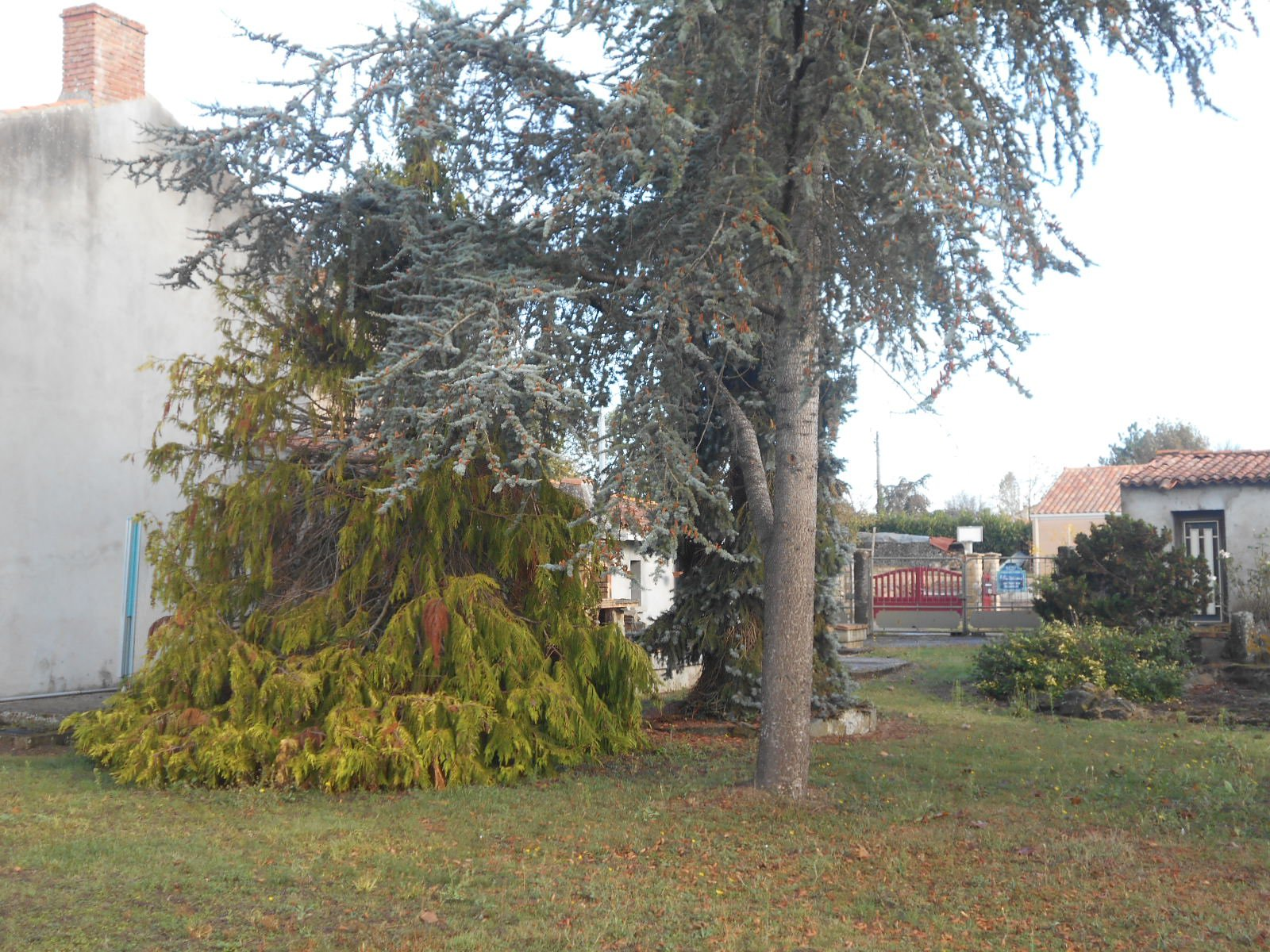 Sale House - Argenton-les-Vallées