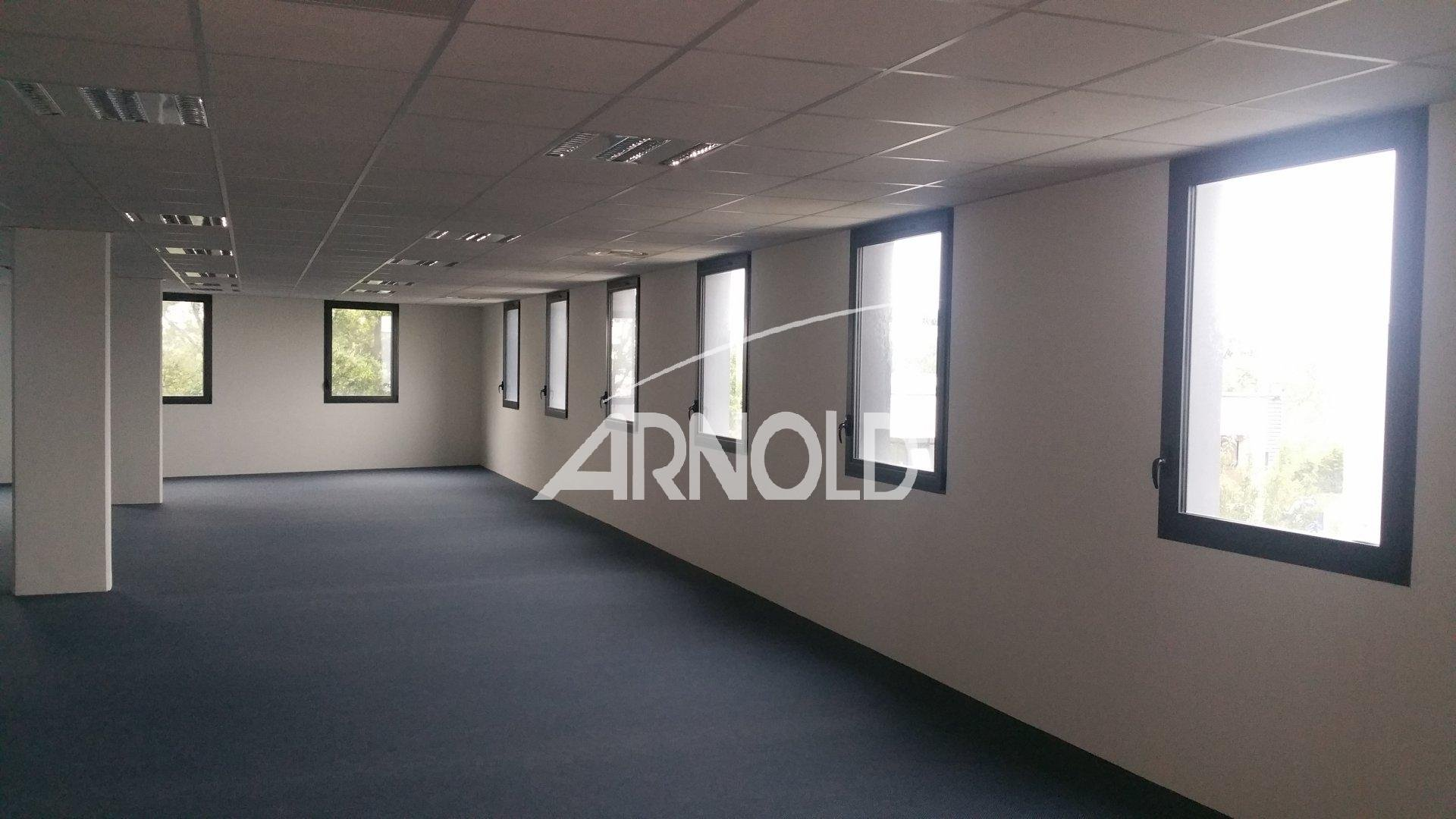 走廊 自然光 Carpet